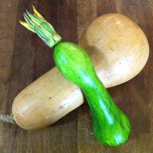可愛い野菜たちの画像