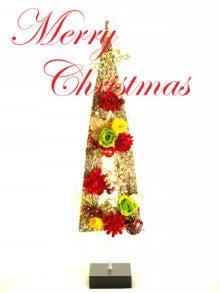 Plumerry(プルメリー)プリザーブドフラワースクール (千葉・浦安校)-クリスマスツリー ワンデイレッスン