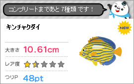 Blue striped angelfish