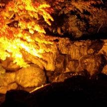 群馬県鬼石紅葉ライト…