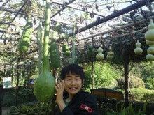 ふくたのログブー-府立植物園⑧