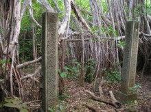小笠原エコツアー 父島エコツアー         小笠原の旅情報と小笠原の自然を紹介します