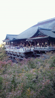 https://stat.ameba.jp/user_images/20101109/16/maichihciam549/77/f6/j/t02200391_0480085410849414484.jpg
