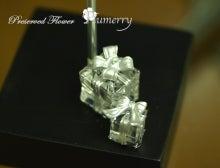 Plumerry(プルメリー)プリザーブドフラワースクール (千葉・浦安校)-クリスマス ツリー ワンデイ