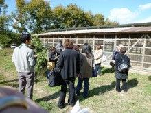 浜松のお好み焼き こなこなのブログ-ひかりのさとファーム養鶏場