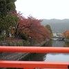 平安神宮 南禅寺 紅葉の画像