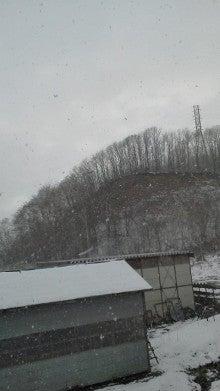 北海道士別市 newmfdfarmのブログ-子供たちに伝えたい、いきることとは?!-20101115144117.jpg