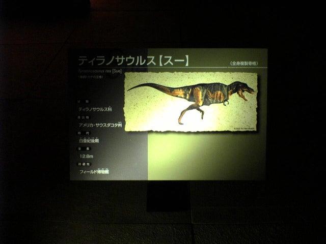 恐竜博2005のティラノサウルスのスー(Sue)の説明書き