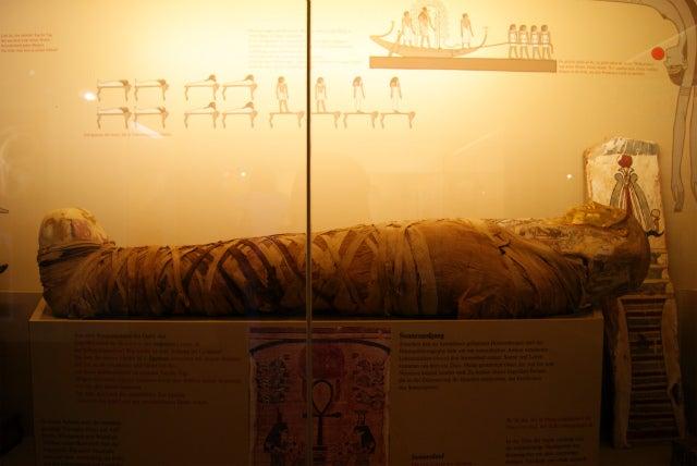 ゼンケンベルグ自然博物館のエジプトのミイラ