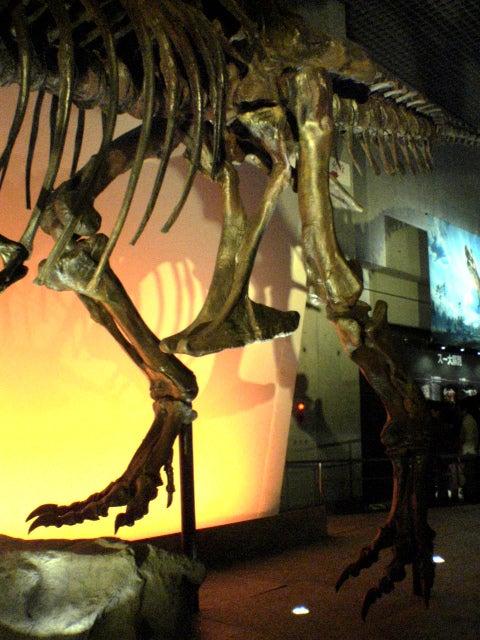 恐竜博2005のティラノサウルスのスー(Sue)の足の化石部分