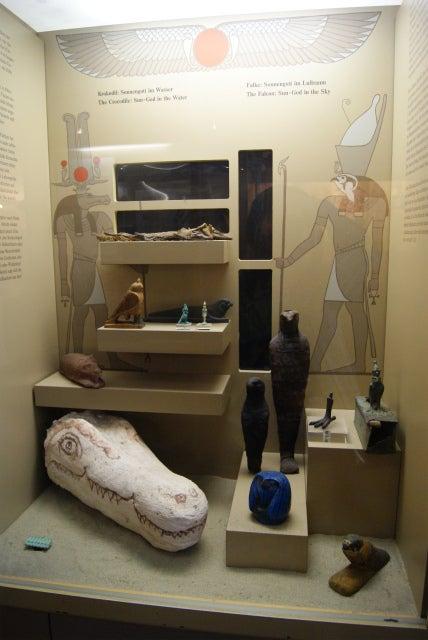 ゼンケンベルグ自然博物館のミイラ