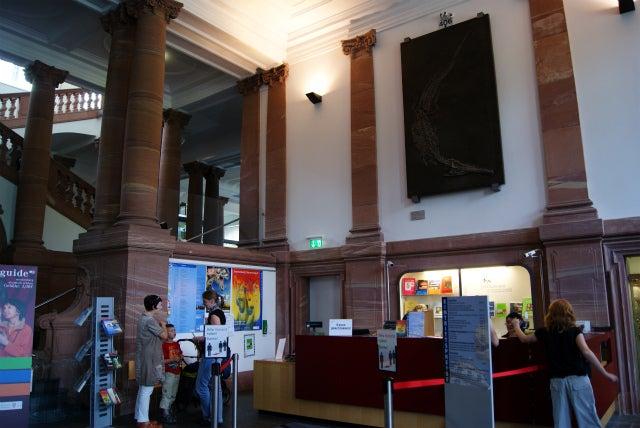 Senckenberg Naturmuseum ゼンケンベルグ自然博物館の受付