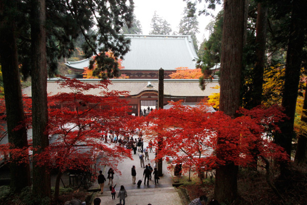 $cheltenhamのブログ-比叡山延暦寺
