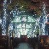 ワンダフルin大阪の画像
