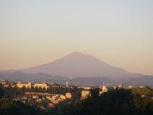 サンプラザエコ館 -エコ館通信--11/11の富士