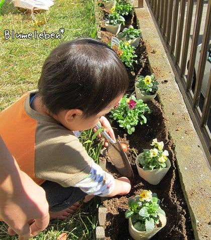 動画で見る!3分フラワーアレンジ-3歳の息子、お花大好き