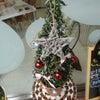 冷たい北風のクリスマス☆の画像