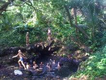 $Organic life of Hawaii