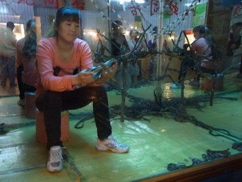 中国大連生活・観光旅行通信**-大連 労働公園 爬虫類館