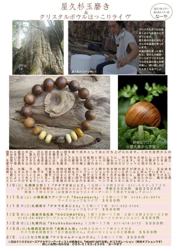$木の魂ー屋久島から大自然の叡智をー
