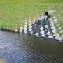十勝川温泉の熱帯魚と…