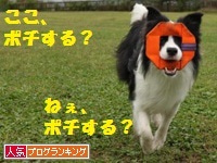 ☆Danger Ranger☆