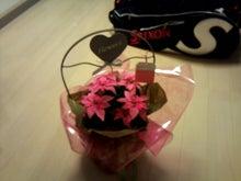『家に帰るまでがテニスです』-flower