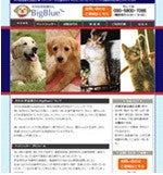 なにごともなんとかなる?犬のお世話屋さんBigBlueのブログ
