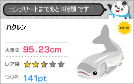 Silver Carp (ハクレン)