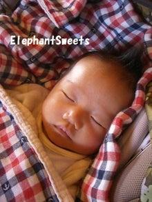 菓子工房 ElephantSweetsブログ