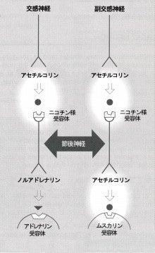 きくな湯田眼科-院長のブログ