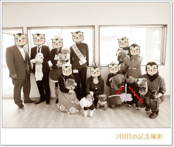 ++Maple children's story++