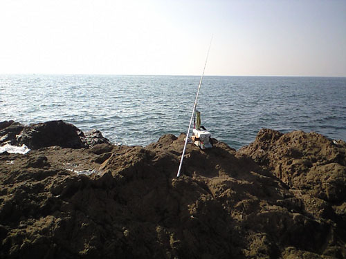 外道大王の投釣りオタク