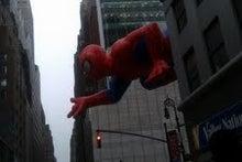N.Y.に恋して☆-spiderman