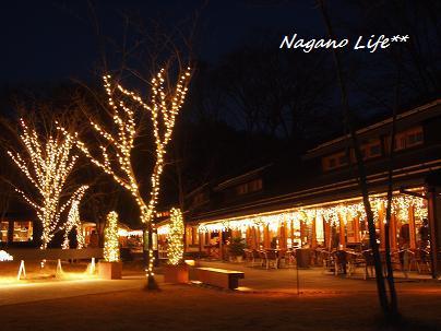 Nagano Life**-ハルニレテラス・ライトアップ