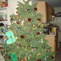 ChristmasT…