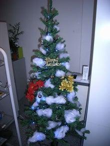 新着商品情報-クリスマスセール キャンペーン