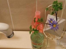 ヒロアミーの日記-お風呂 花