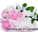 ★danteのカナダ生活★