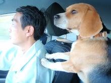 古材流通熊本店のブログ-マッキードライブ1