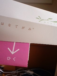 佳子のブログ-101215_1444~01.jpg