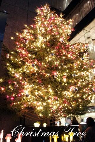 HappyDays ~Travel Diary~-ミキモト クリスマスツリー
