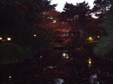 アートテラー・とに~の【ここにしかない美術室】-日本庭園