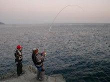 磯人の釣り釣れ報告-Oguさんヒット