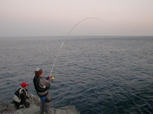 磯人の釣り釣れ報告-Oguさん耐える