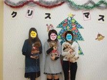 名古屋にあるドッグカフェ・スマイルドッグカフェ-集合写真
