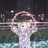 2010 クリスマス☆イルミネーション その2の画像