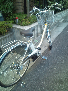 ami's blog-20101225131407.jpg