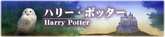 kazukunの 神出鬼没-ハリーポッター フクロウ