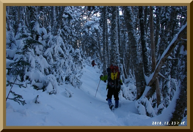 ロフトで綴る山と山スキー-1223_1430